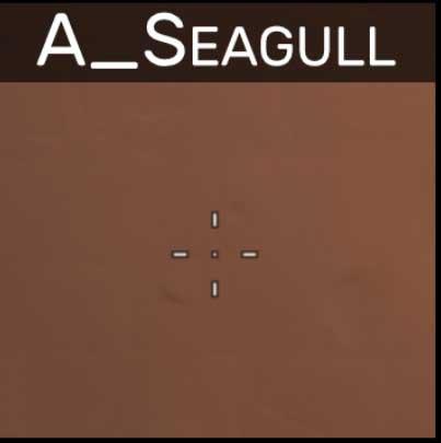 A_Seagull valorant crosshair